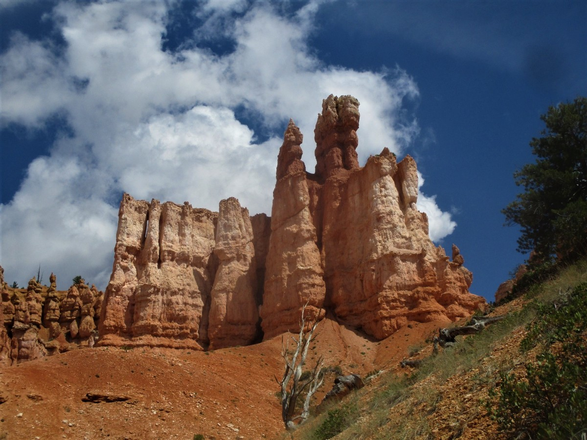 Bryce Canyon NP is dominated by these strange rock formations, called hoodoos