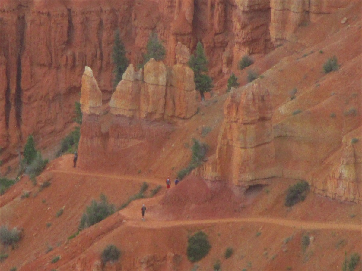 Hikers who venture down from the rim of Bryce Canyon will find some fascinating trails.