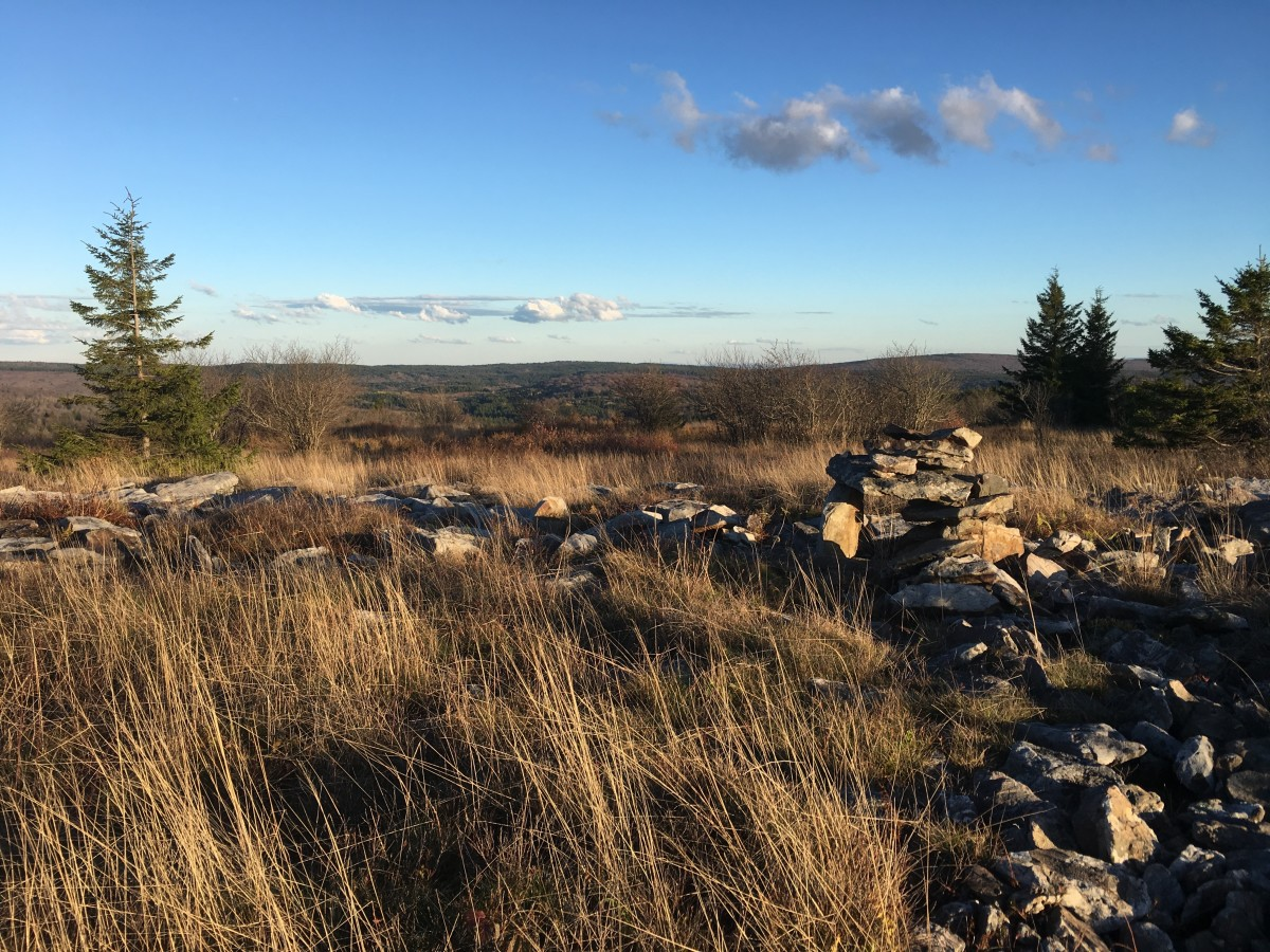 Stone Cairn near Rocky Ridge Trail in the Dolly Sods Wilderness