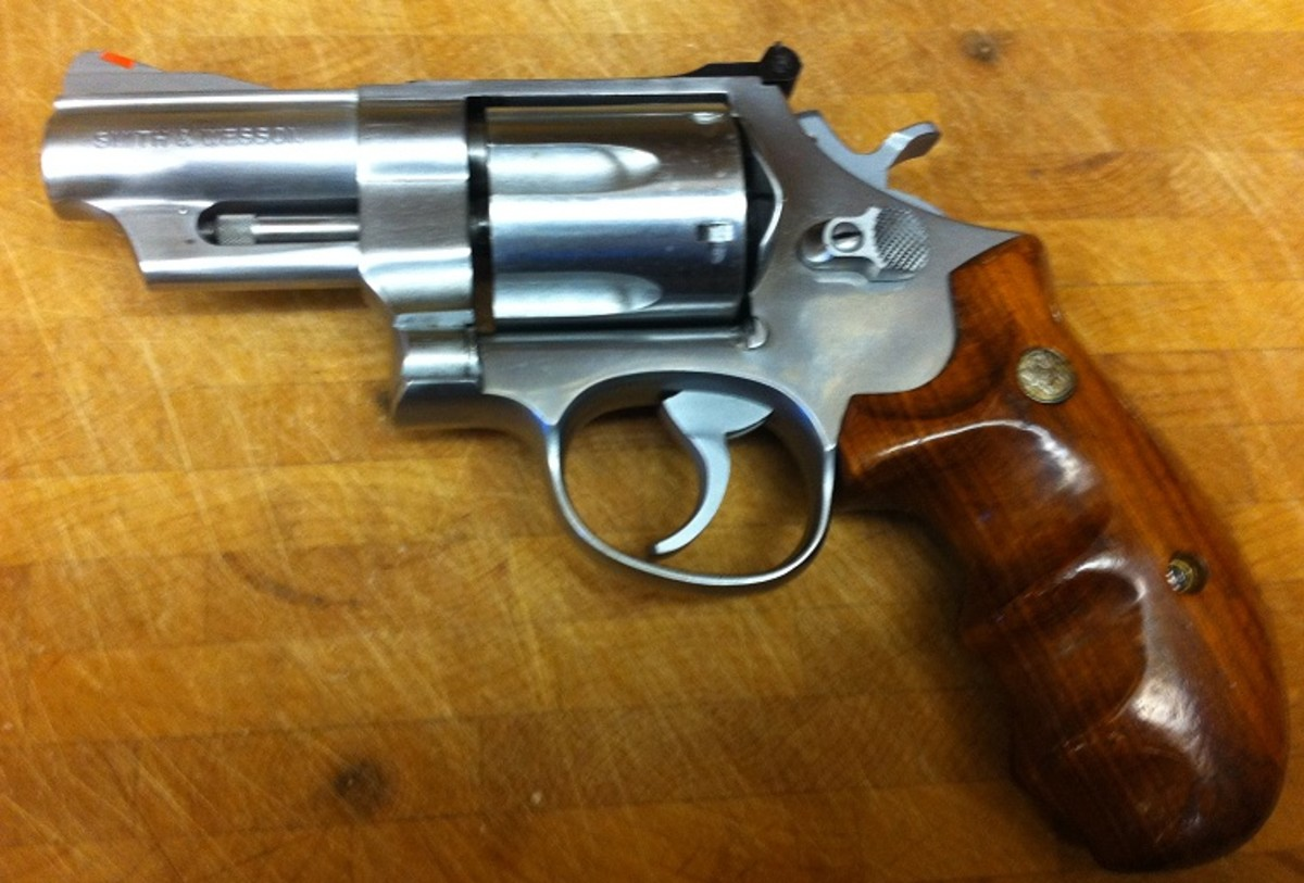 S&W M657 .41 Magnum.  Big-bore stainless steel revolvers make excellent hunter backup guns