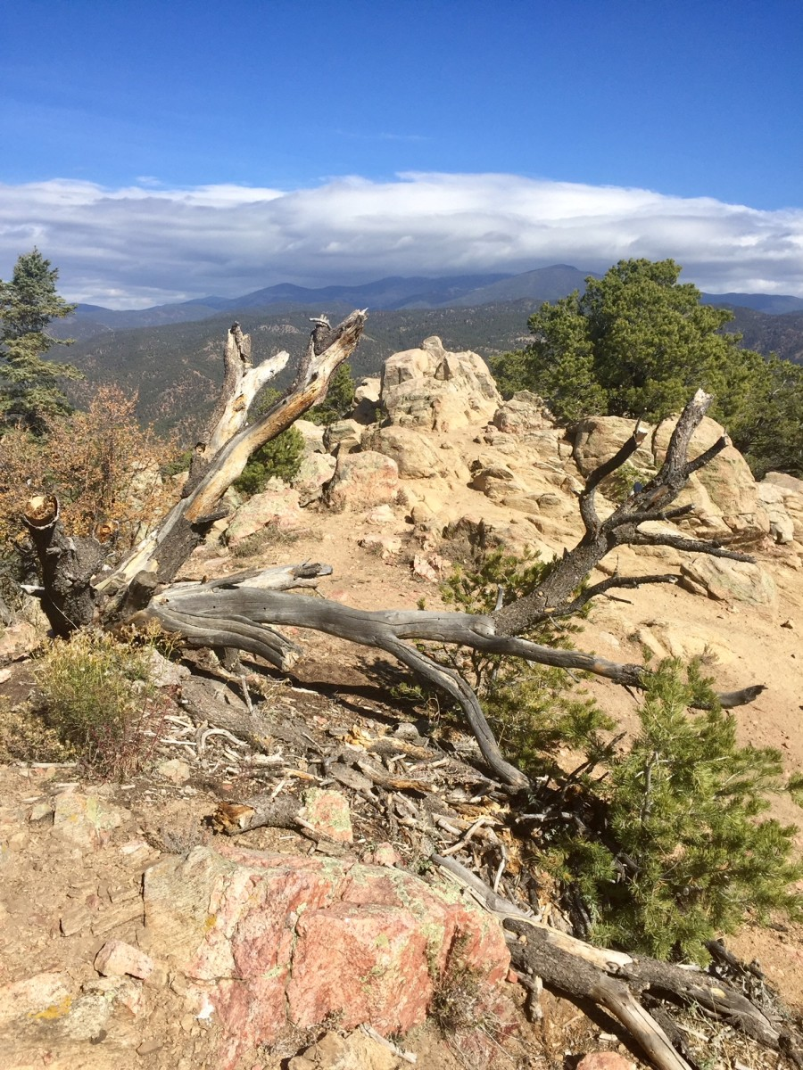 Top of Picacho Peak