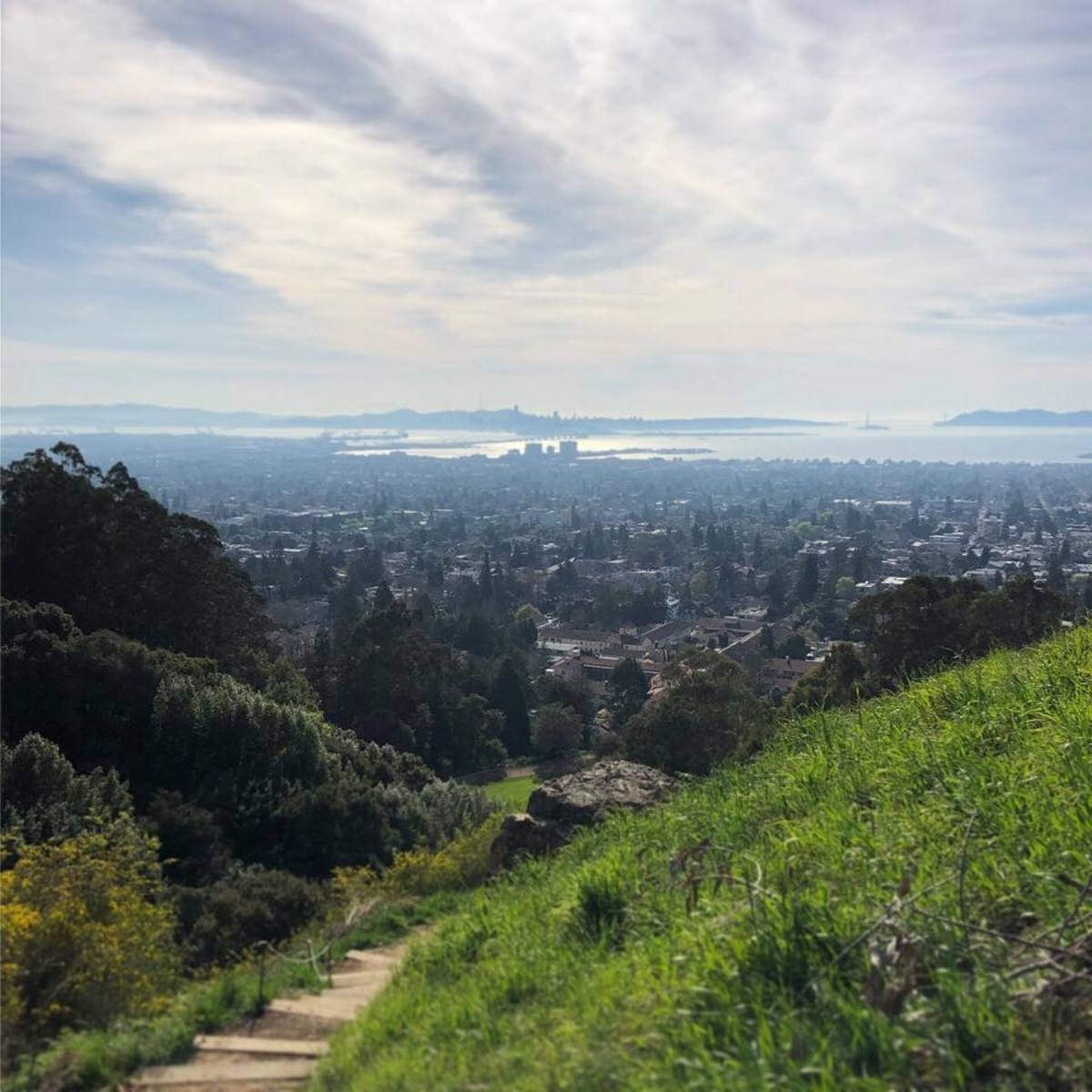 View From a Hike in the Berkeley Hills