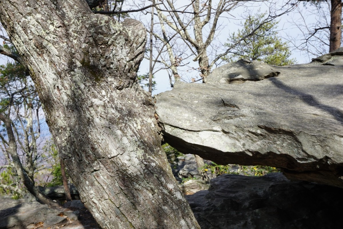 Hanging Rock Trail. It looks like this rock is kissing the other rock! Hanging Rock State Park Danbury, NC