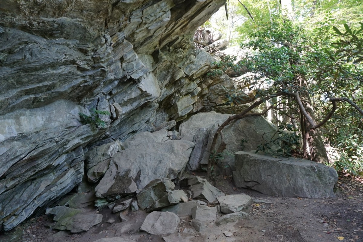 Area surrounding Window Falls.