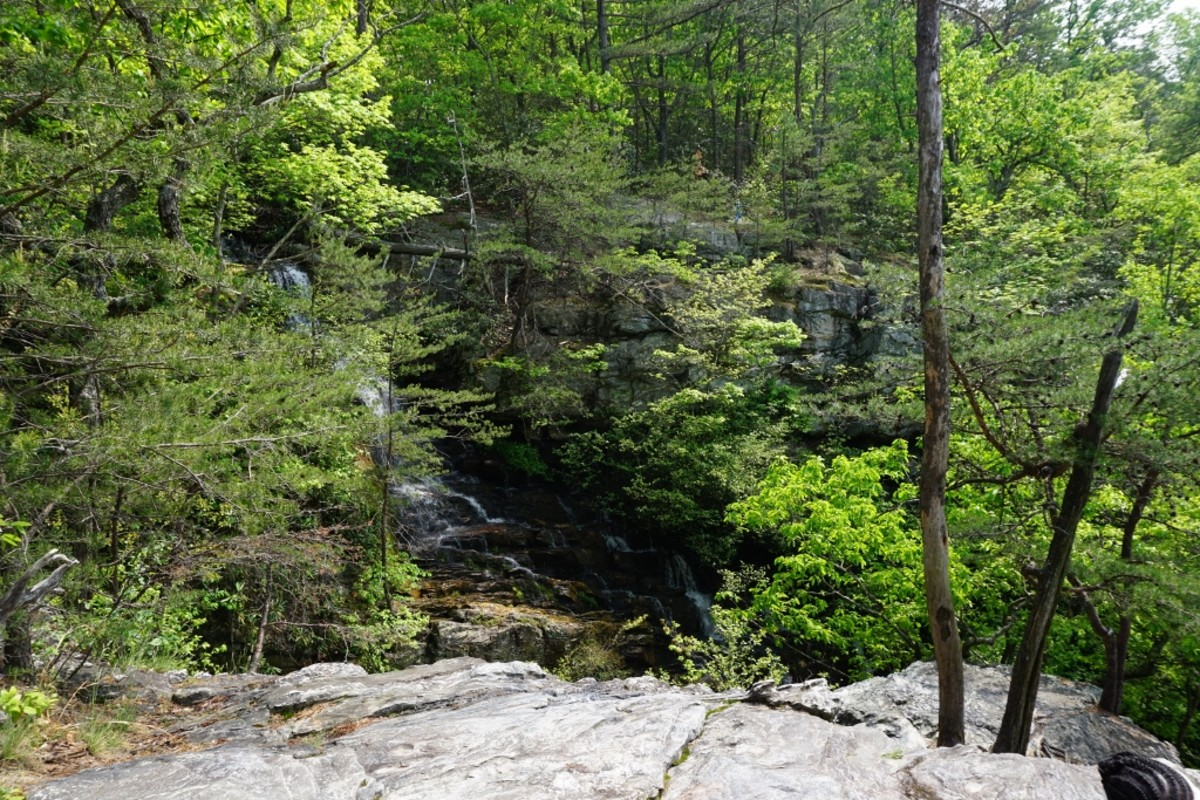 Scenes along the Tory's Den Cave / Tory's Falls Trail at Hanging Rock State Park - Danbury, NC
