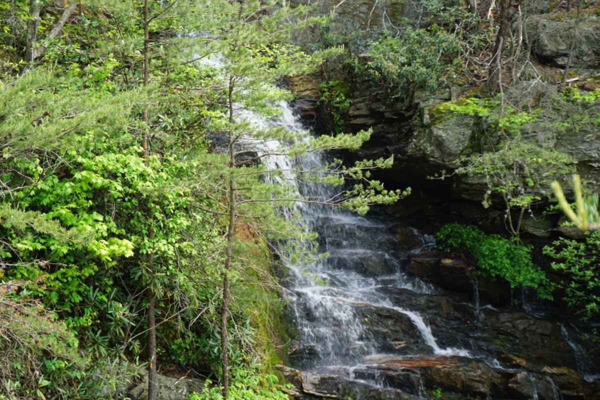 Scenes along the Tory's Den Cave / Tory's Falls Trail at Hanging Rock State Park - Danbury, NC - Tory's Falls