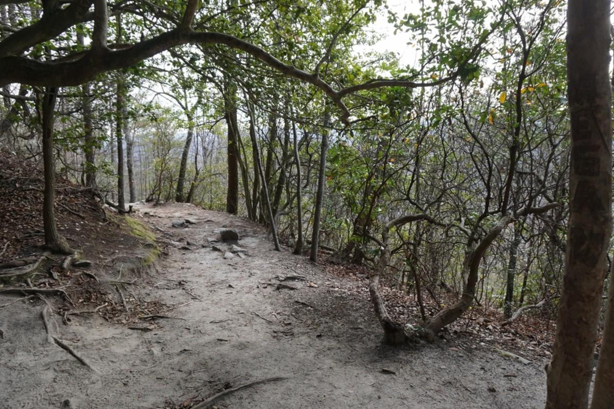 Hanging Rock Trail Hanging Rock State Park Danbury, NC