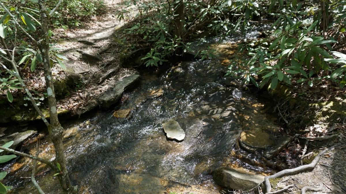 Indian Creek Trail at Hanging Rock State Park, Danbury, NC