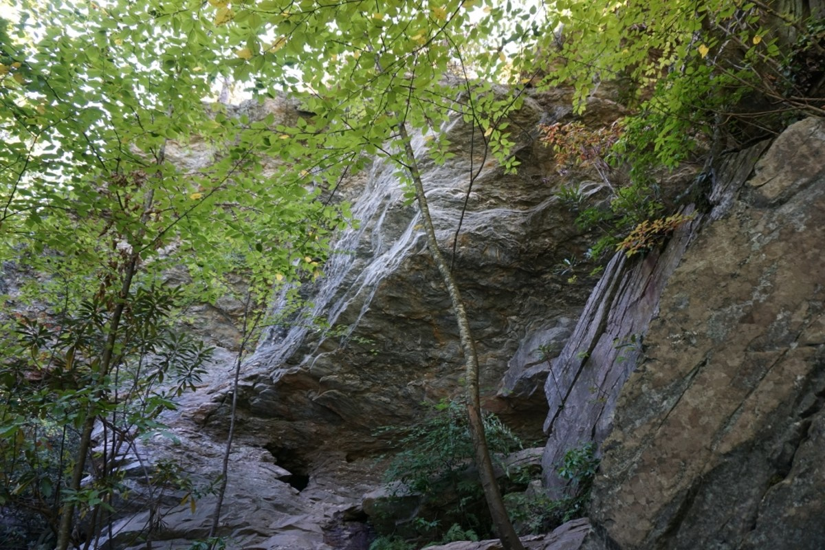 Area surrounding Window Falls, on the Indian Creek Trail.
