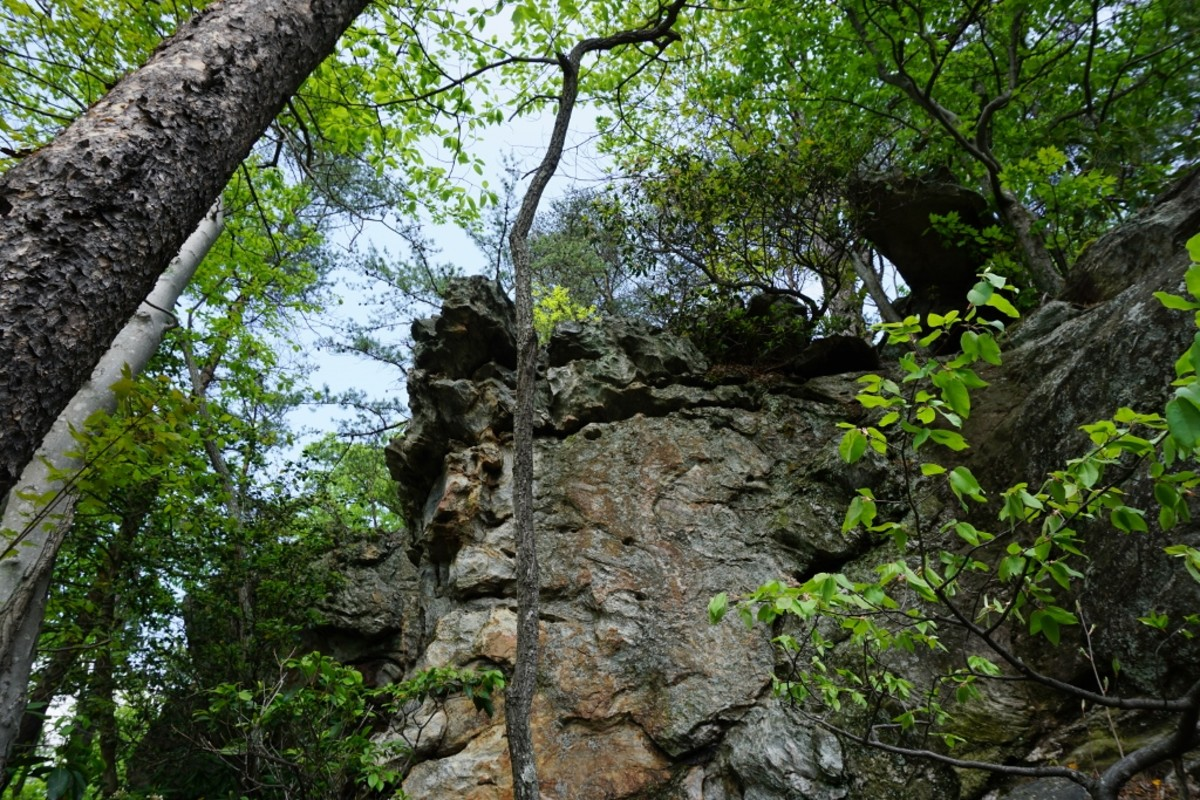 Scenes along the Tory's Den Cave / Tory's Falls Trail at Hanging Rock State Park - Danbury, NC. Awesome rock formations in this area of the park.