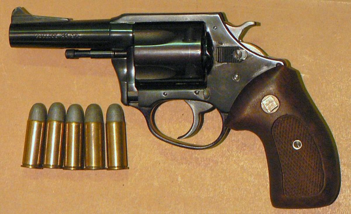 Charter Arms Bulldog with .44 Special lead round-nose ammo.