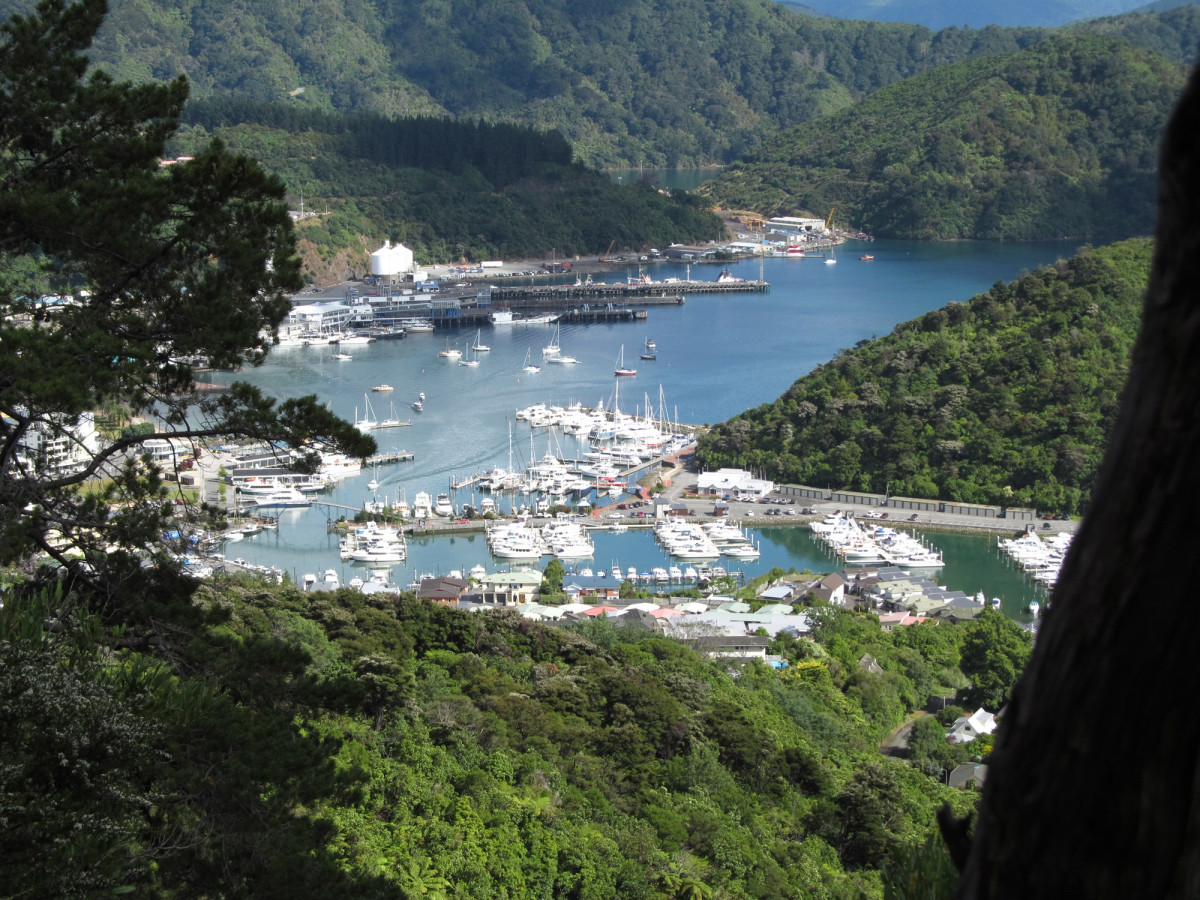 Picton Harbor as seen from Tirohanga Trail