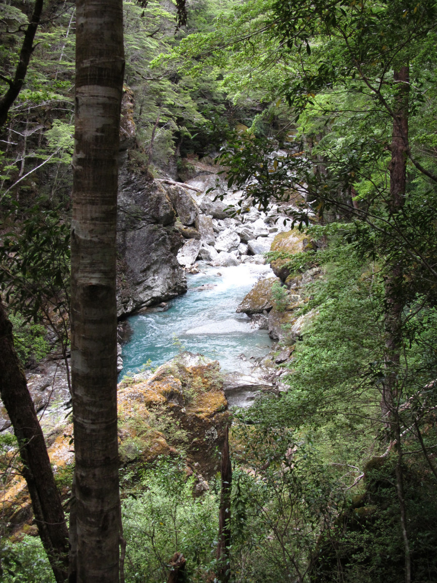 The Rees River as seen from the Routeburn Track near Glenorchy, New Zealand.