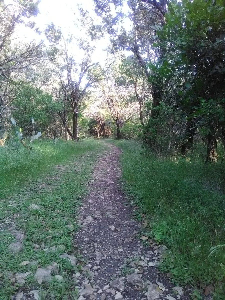 Exogyra Trail