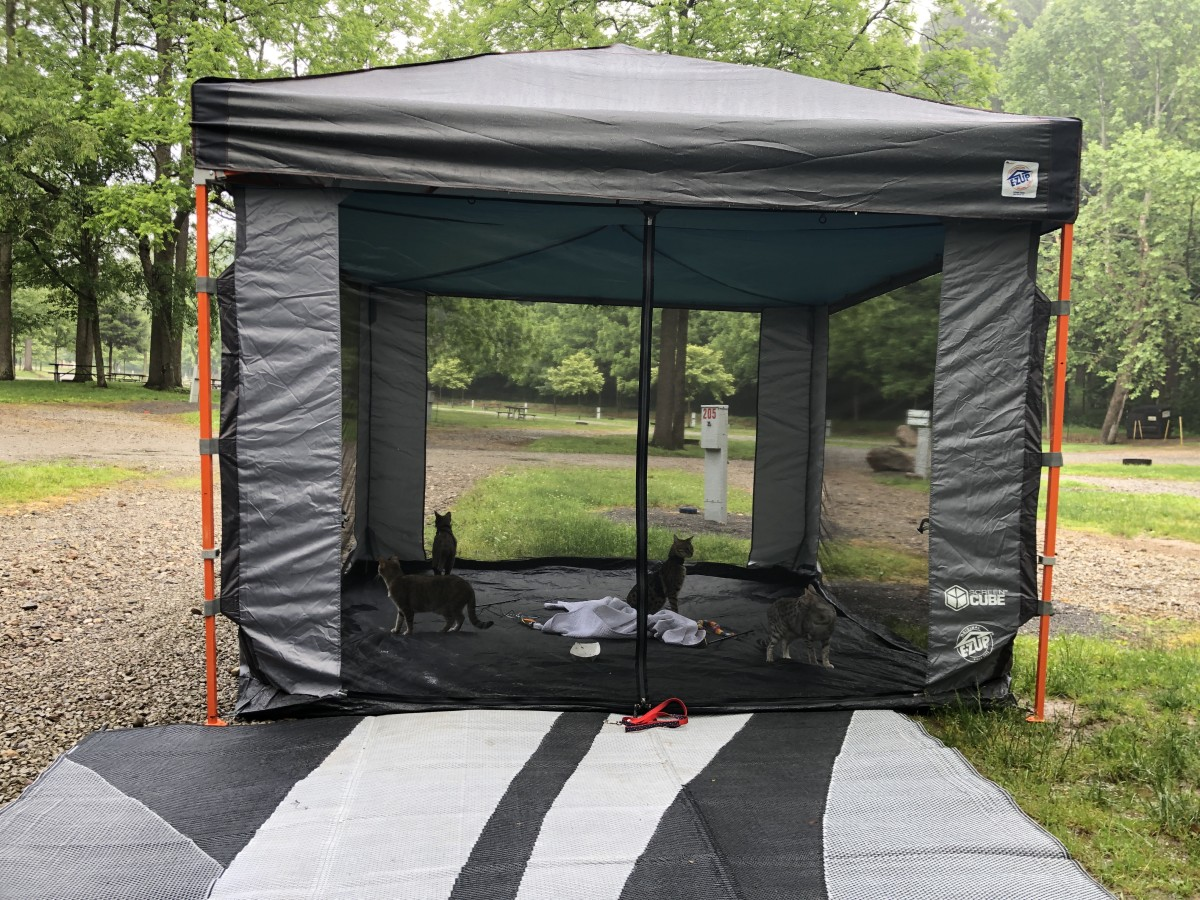 A shot from another campgrounds showing our four Savannah cats enjoying the screen room.