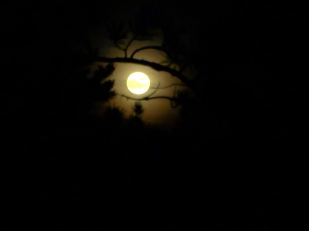Very bright full moon