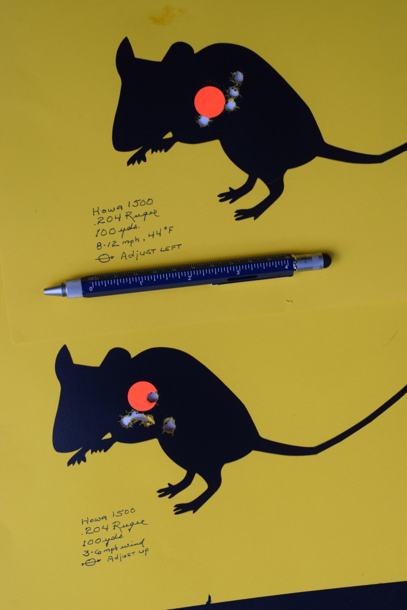 Life-size vermin targets. The pencil is graduated in 16ths of an inch.