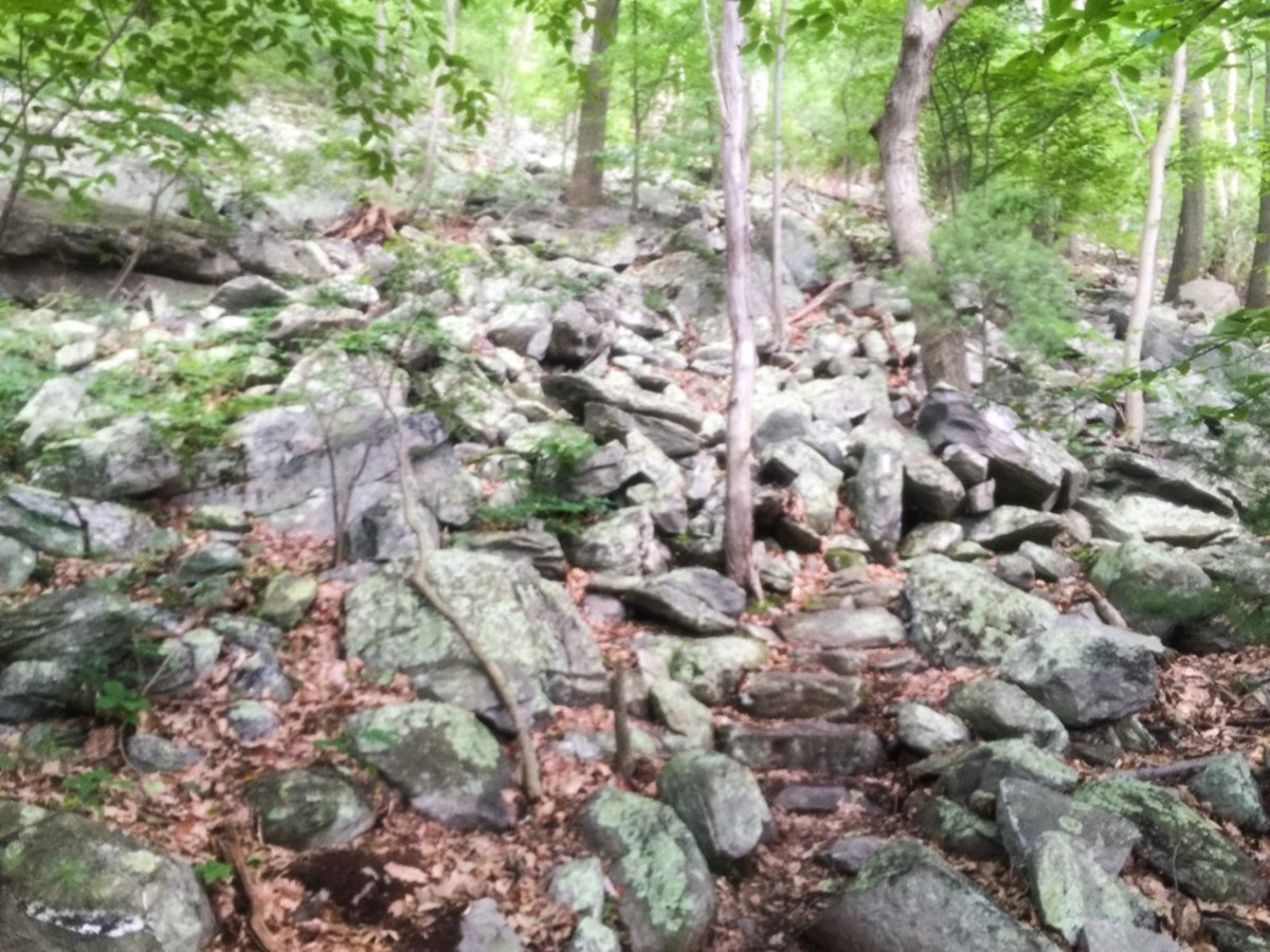 Rocks, rocks, and more rocks. This is what the majority of the trail consists of in MD