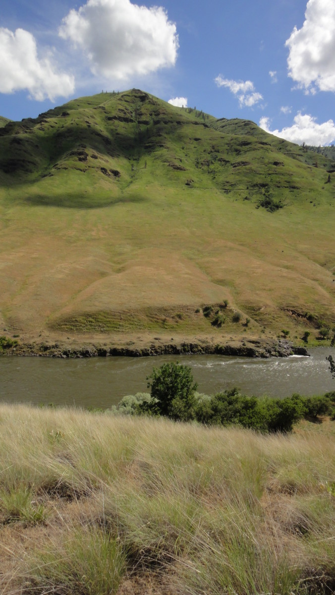 The Grande Ronde in the Shumaker Grade section