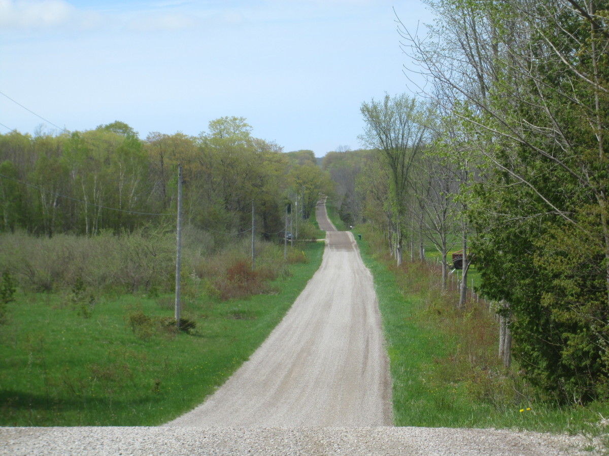 One of the many dirt roads.