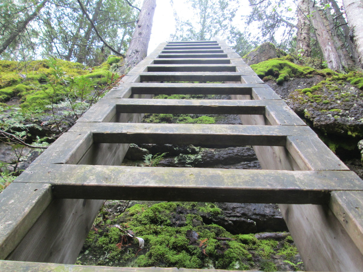 Portions of the trail require to go up and down wood and steel ladders.