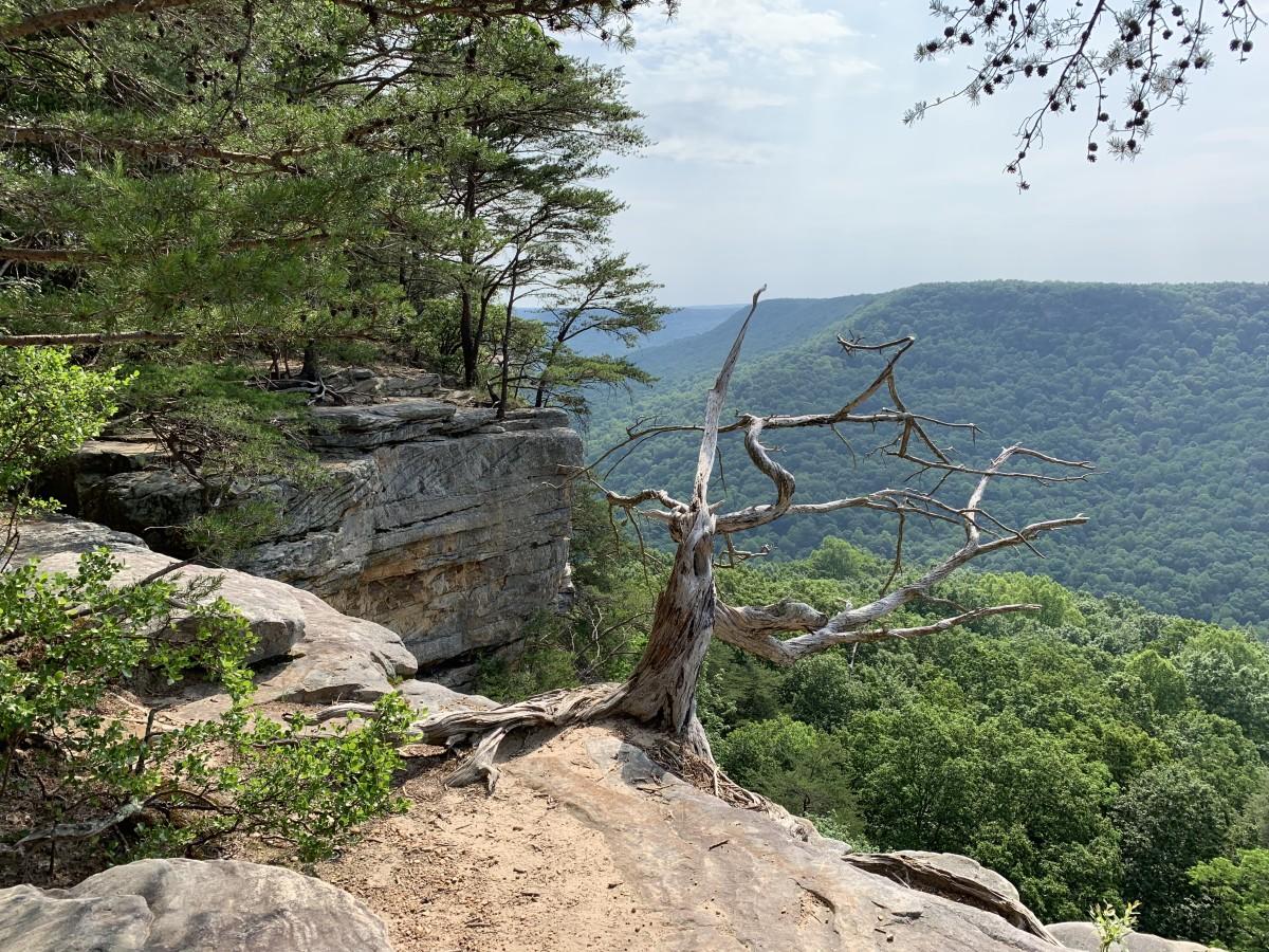 Cliffs of Stone Door