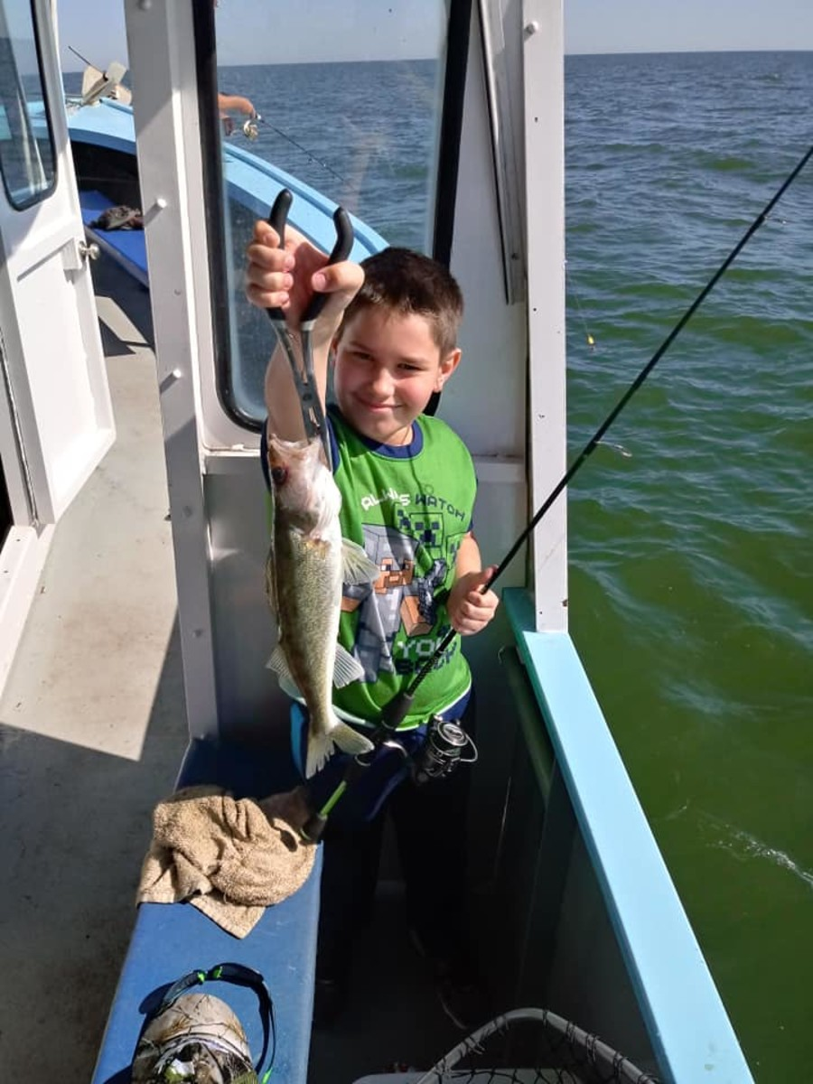 A young man hoisting his prized catch, spring is the perfect time to take children as the schools are dense and even a novice can land a few fish quite easily.