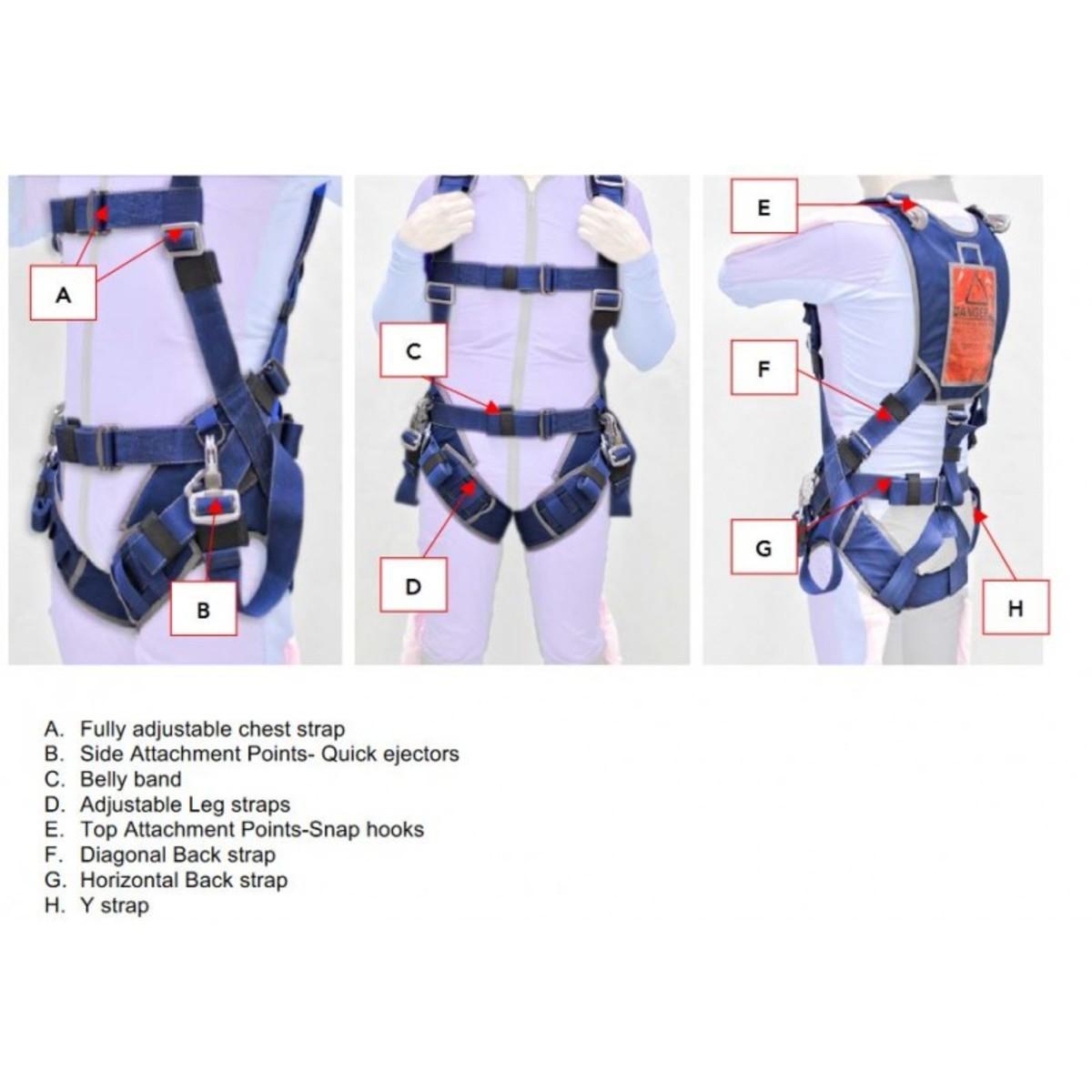 Tandem passenger harness