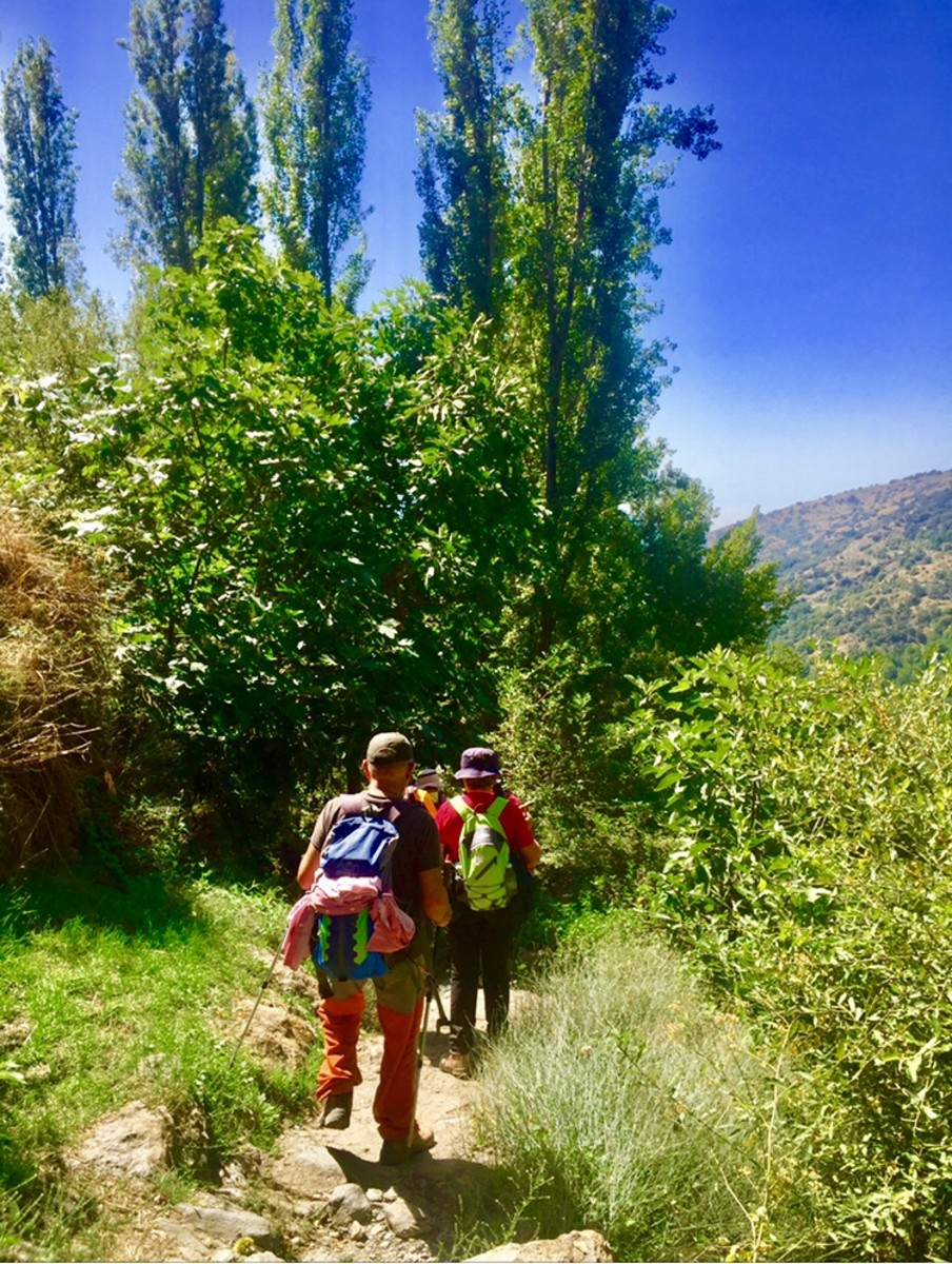 Hiking in the green cultural landscape between the villages.