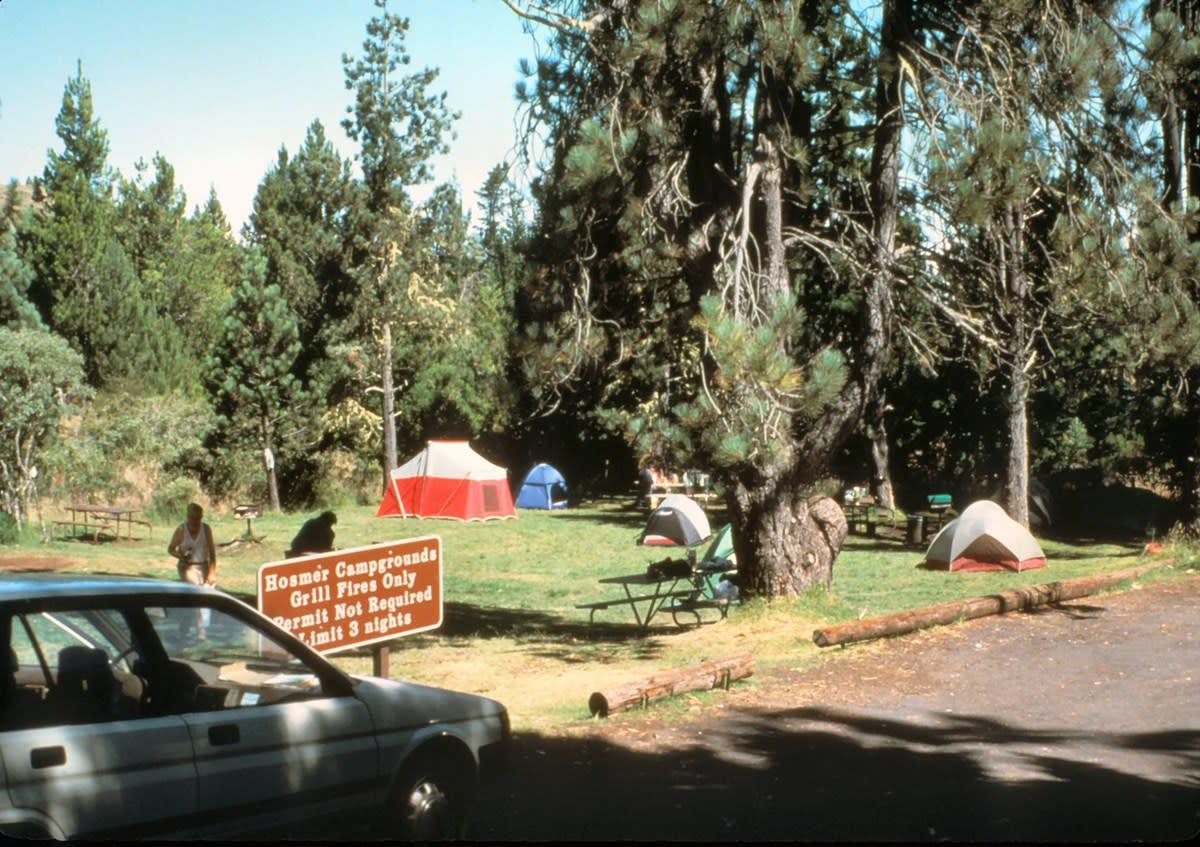 Hosmer Grove Campgrounds on Haleakala, in Volcanoes National Park, on Maui, HI