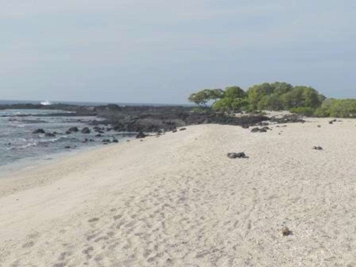 Vivid white sand beach on Kohanaiki Beach Park, Hawaii County, Island of Hawaii, HI