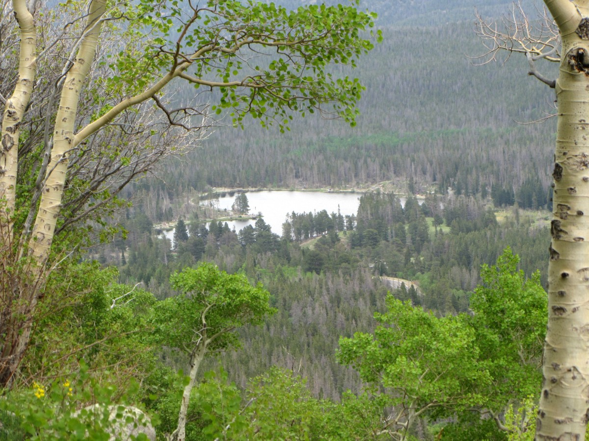 Sprague Lake from the trail to Bierstadt Lake