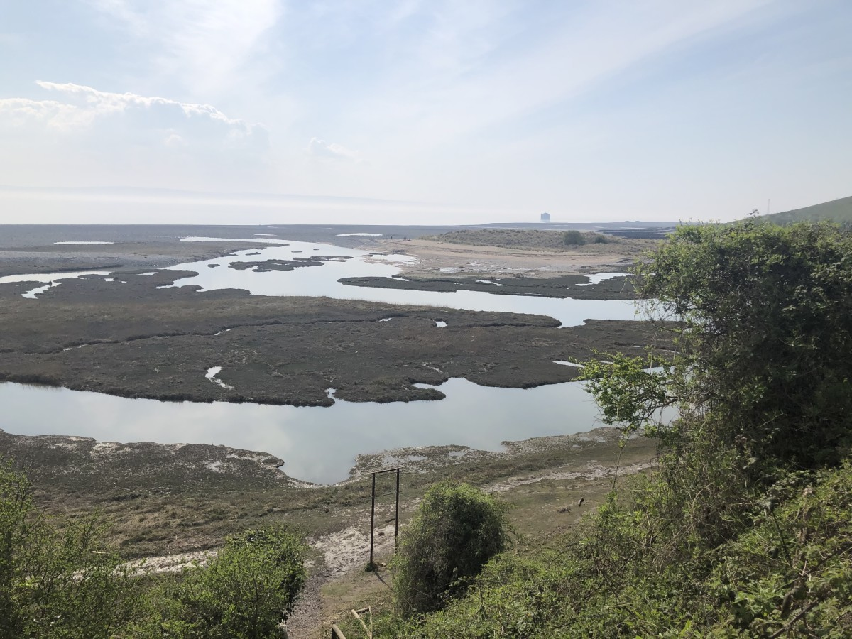 Aberthaw nature reserve on the Vale of Glamorgan heritage coast in South Wales