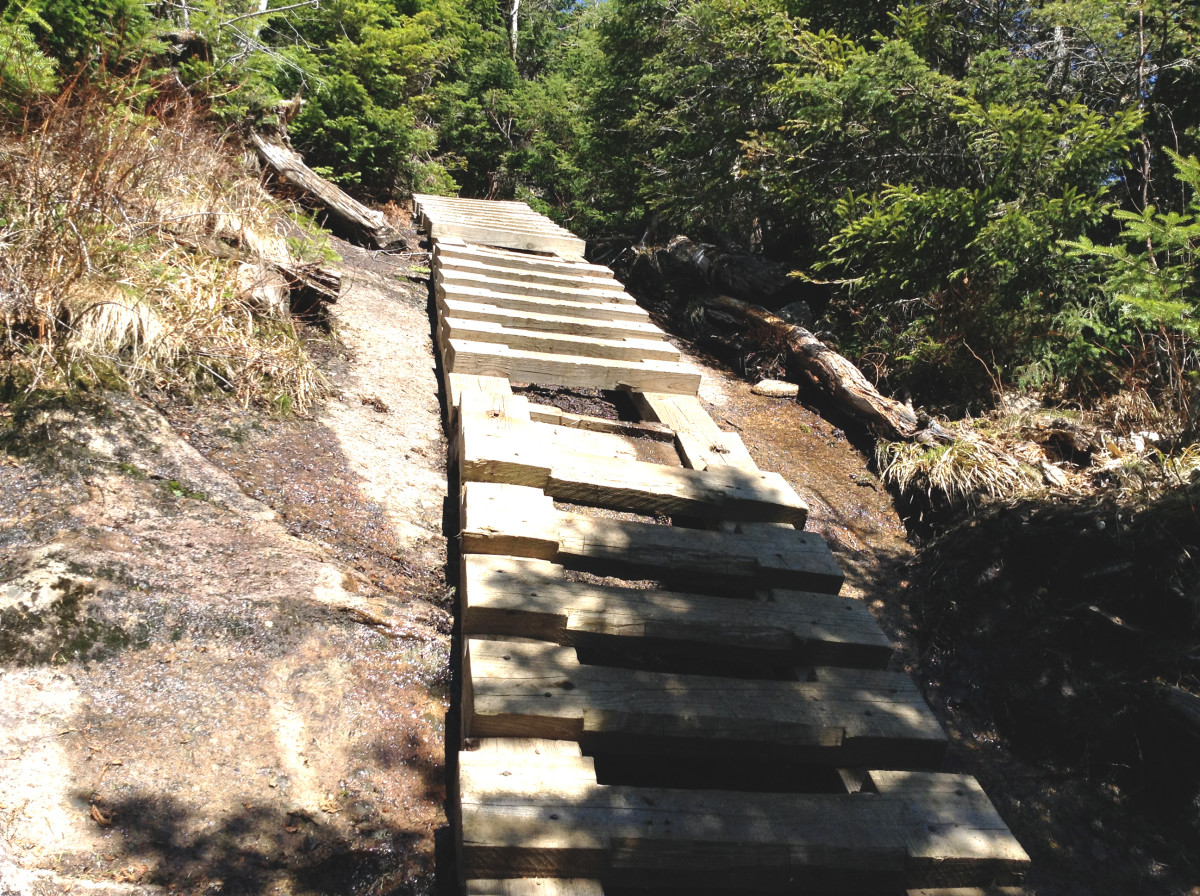 Ladders to the Summit