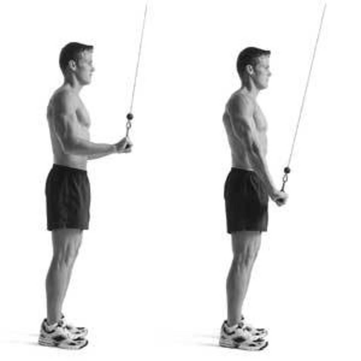 Proper triceps push-down technique.