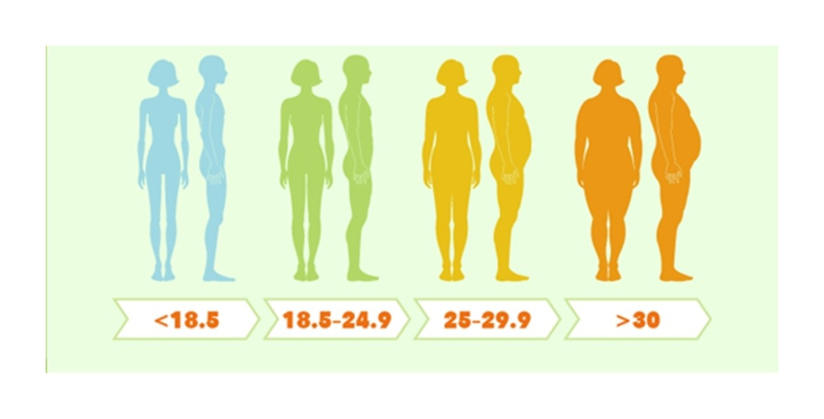 This graphic gives a pictorial representation of approximate BMI for women and men