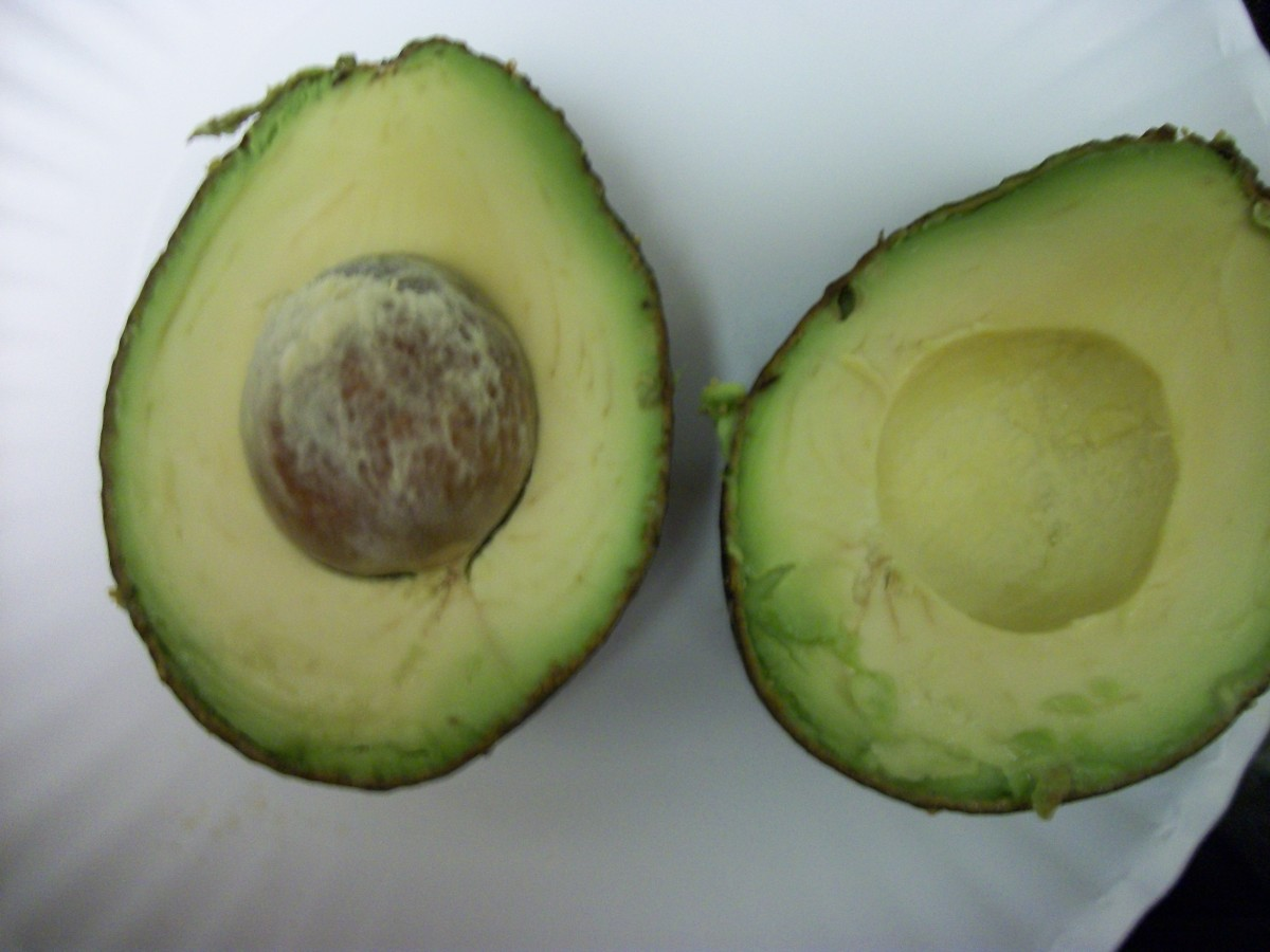 Avocado, a source of Vitamin E