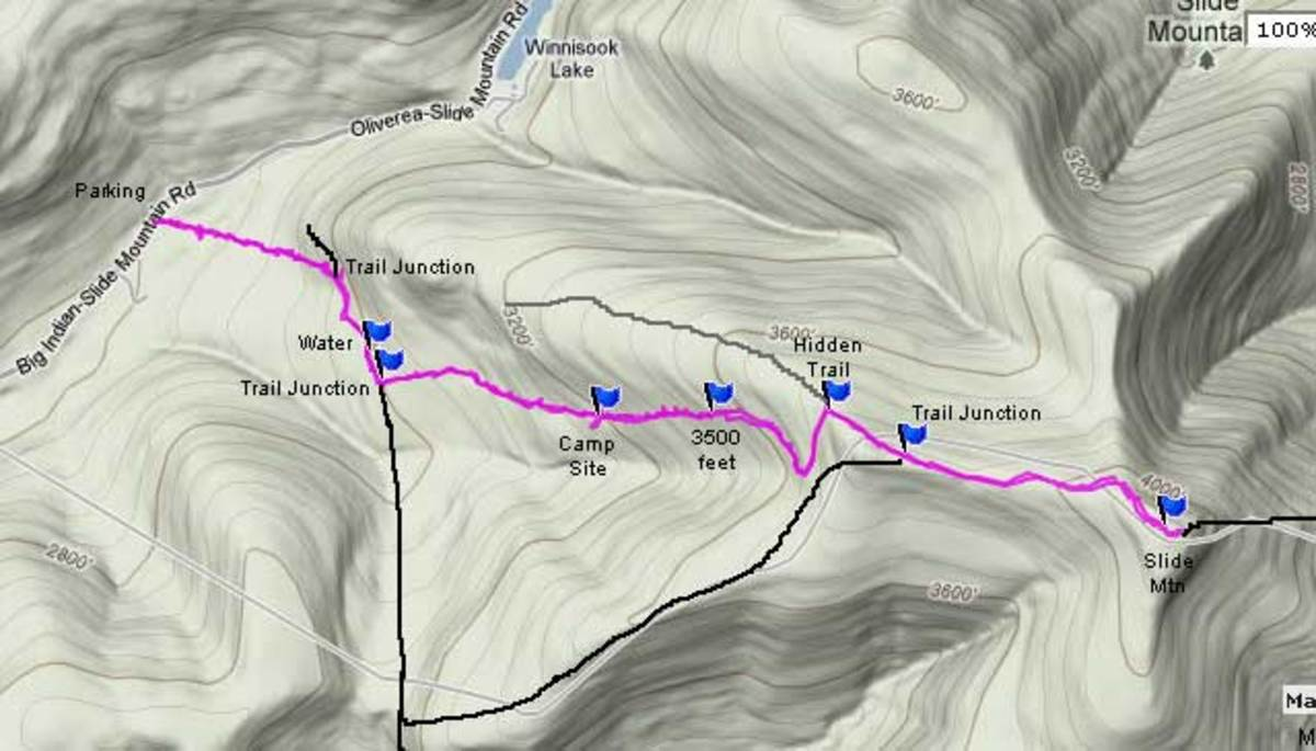 The Planned Route in Purple