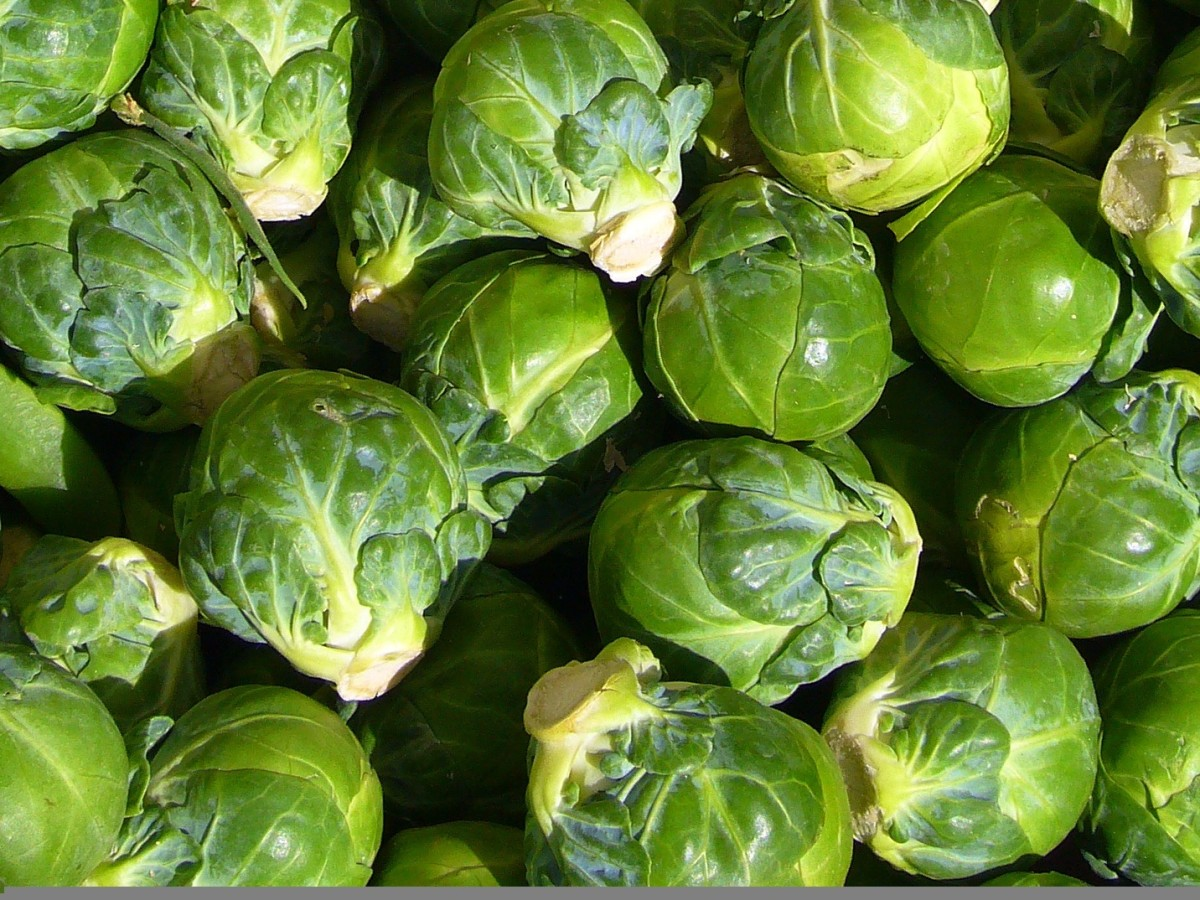 Brussels sprouts and other cruciferous vegetables are good for memory and health.