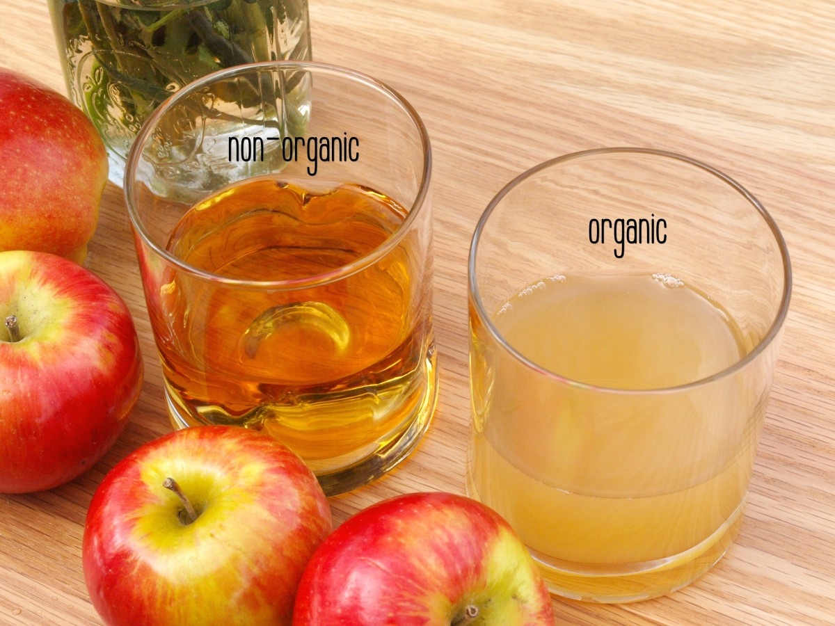 Can Apple Cider Vinegar Help With Weight-Loss? | CalorieBee