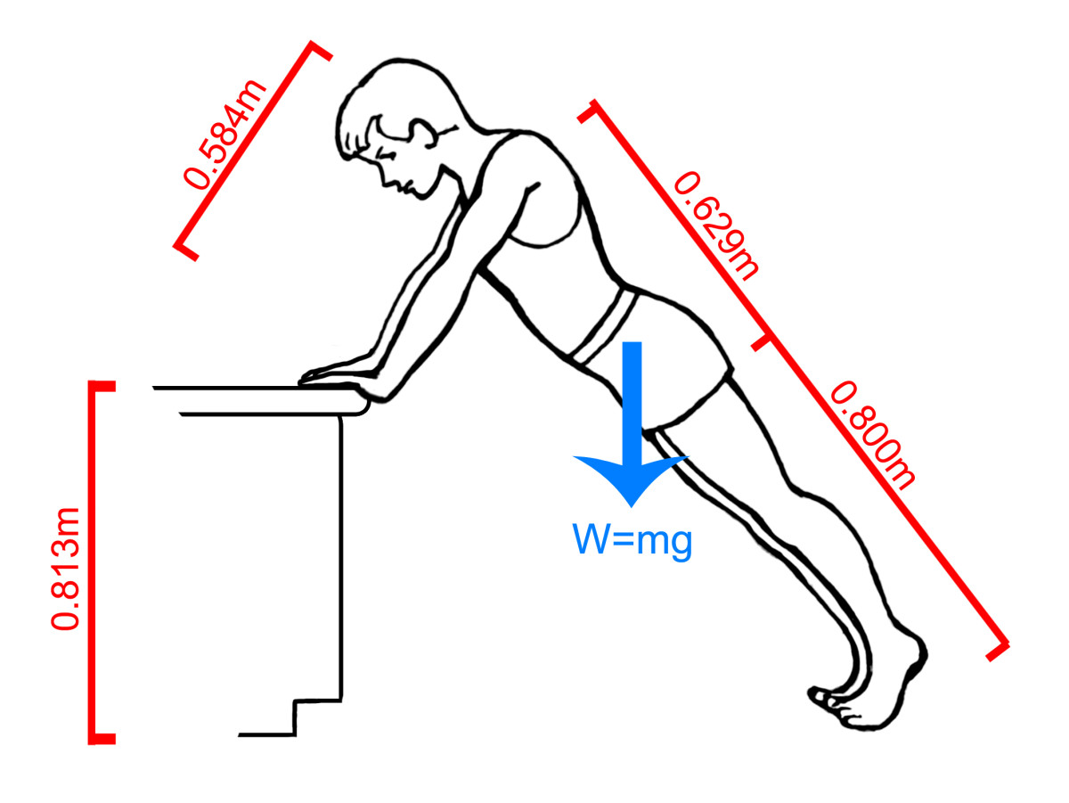 "A standard counter top is 32"" above the ground. Try this inclined push-up position at home. You'll find that it is very easy compared to the regular push-up position."