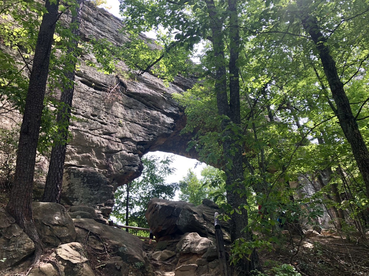 Another view of the amazing Natural Bridge in the Red River Gorge and Geological Area in Kentucky.