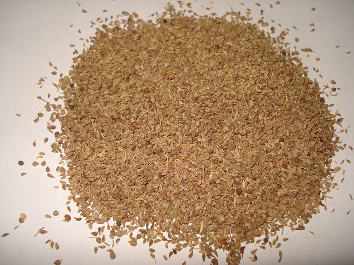 Dried ajwain.