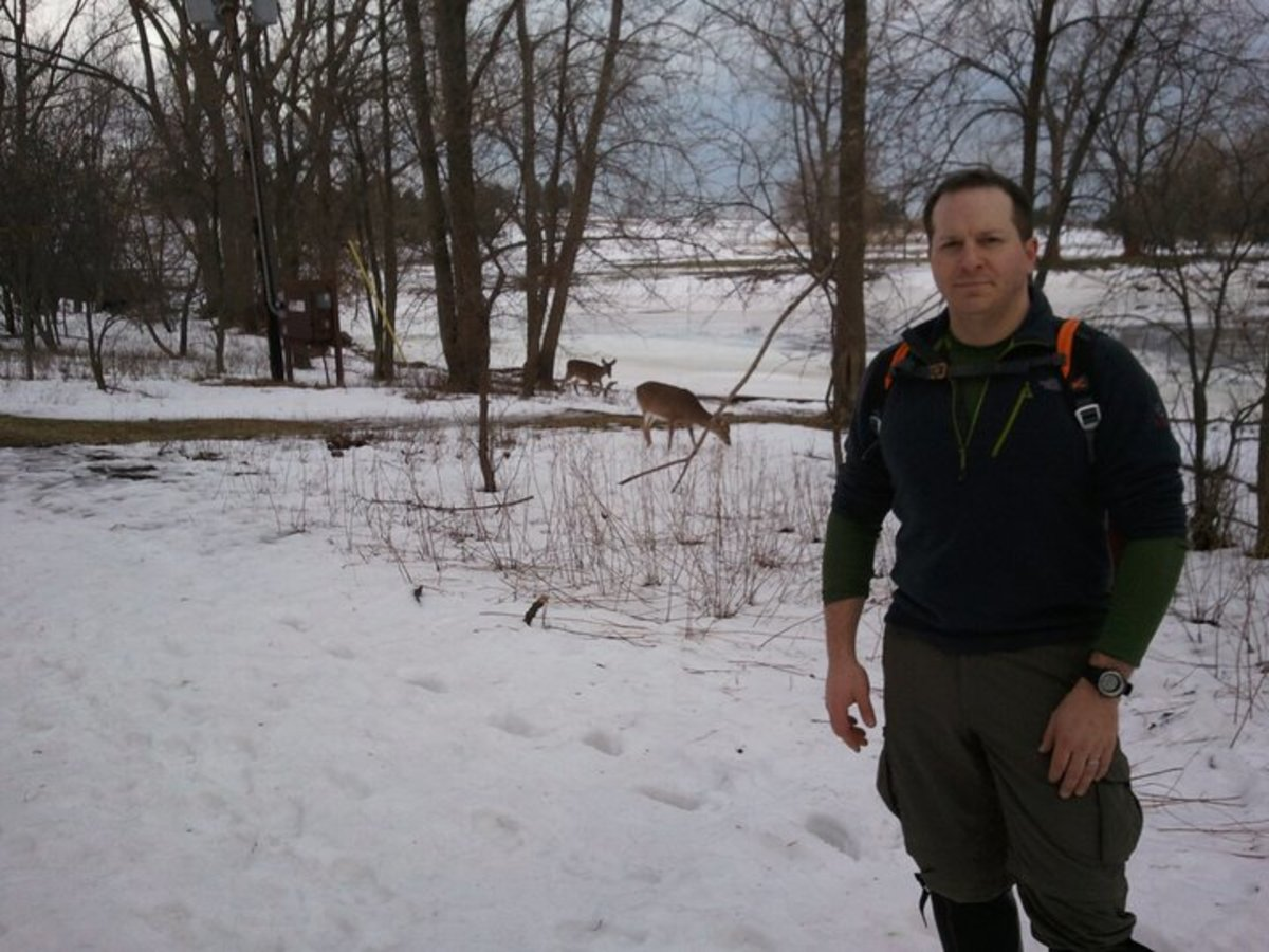 Experience your environment in all four seasons by winter hiking.  Notice the deer in the background.