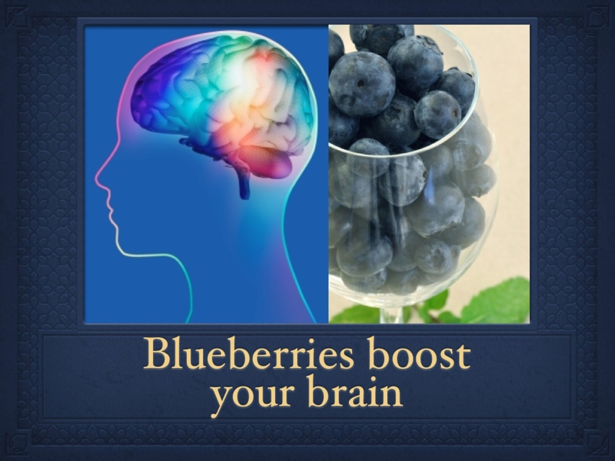 Blueberries support a healthy brain function.