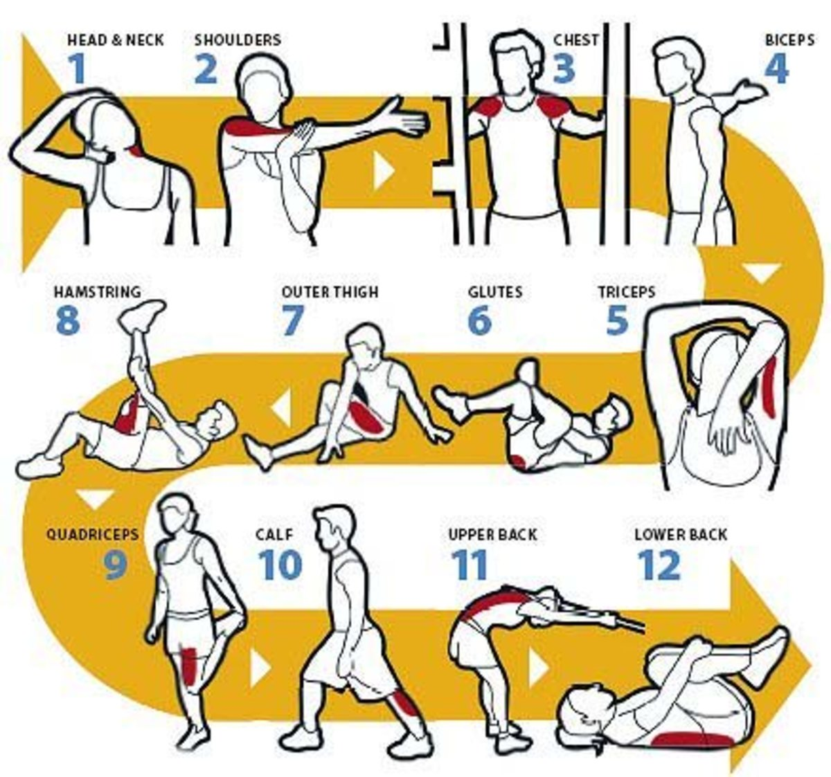 A basic full body static stretching routine.