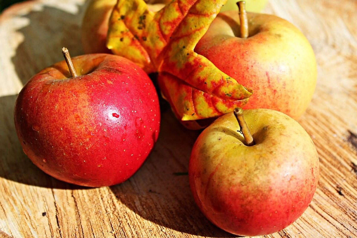 Significant quantities of benzoic acid have been found in apples. The presence of the chemical may depend on the existence of a fungal infection in the fruit, however.