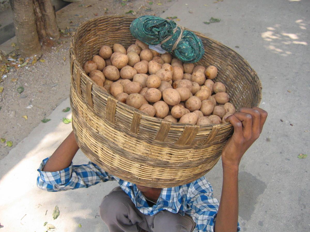 A chikoo vendor in India