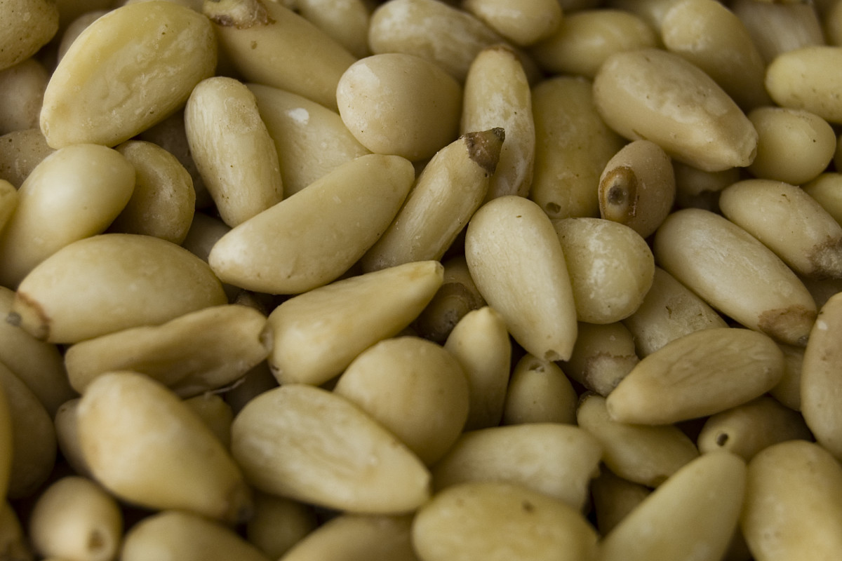 Shelled Korean pine nuts
