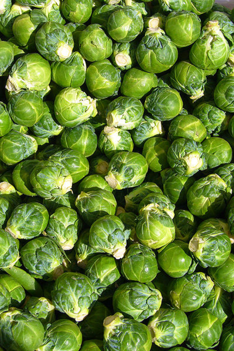 Brussels sprouts are rich in Vitamin K.